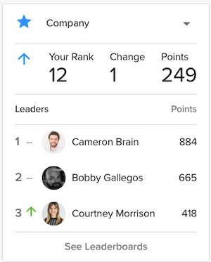 Gamification leaderboard example.