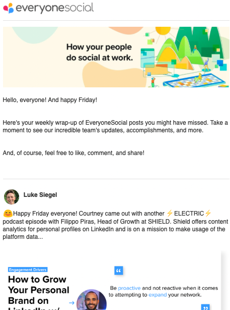 EveryoneSocial newsletter example.